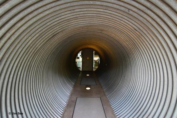 3_DSC6106-1 Tunnel