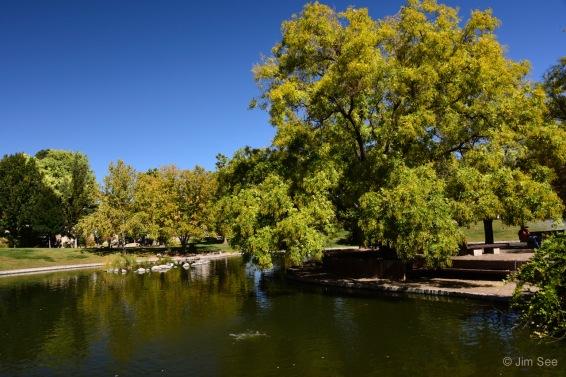 Image #9c Duck Pond_DSC6011
